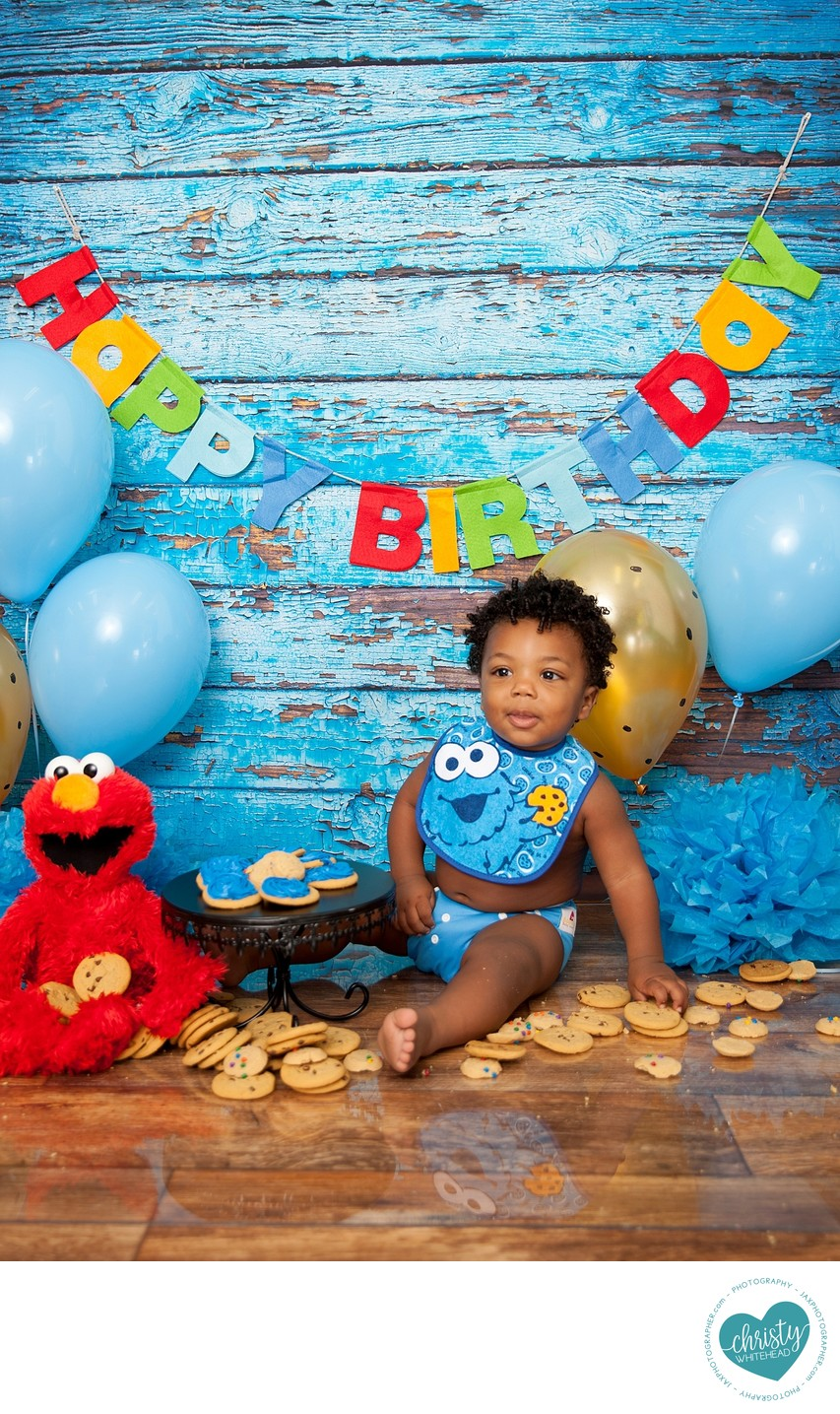 Baby Cookie Monster Photo Shot Florida