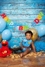 Baby Cookie Monster Photo Shot Florida Cake Food Smash