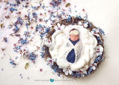 baby photography in Jacksonville, Florida flowers basket