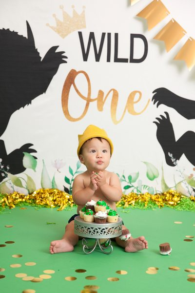 Where The Wild Things Are Cake Smash JAX Photography