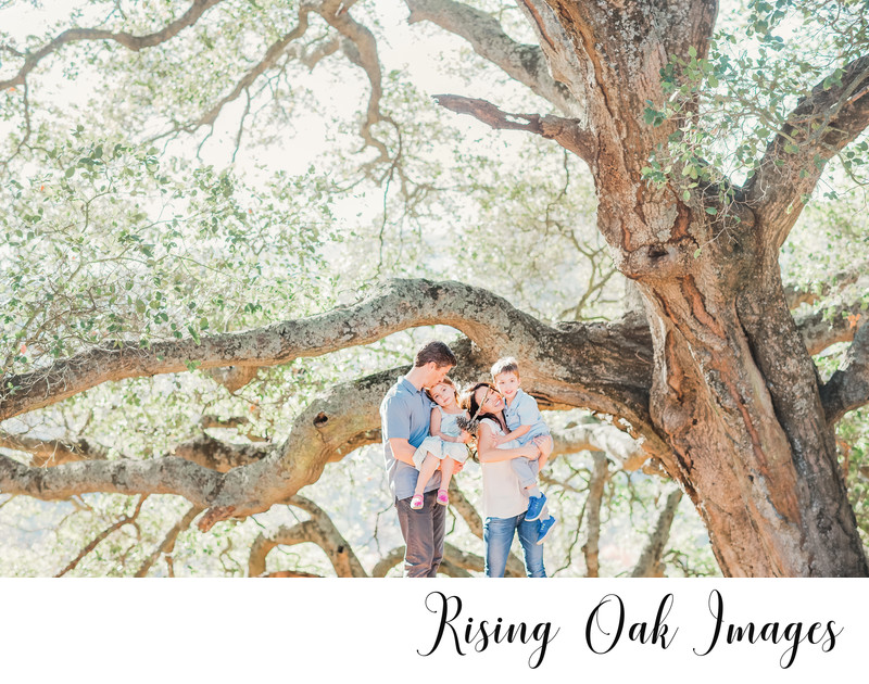 Candid of family under Oak Tree in hill country