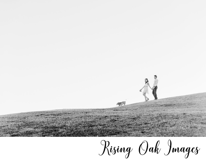 Distant photo of engaged couple walking dog on hill
