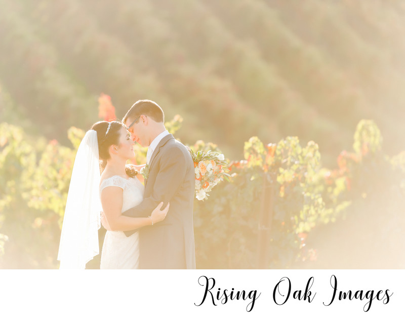 Austin hill country wedding among vineyards
