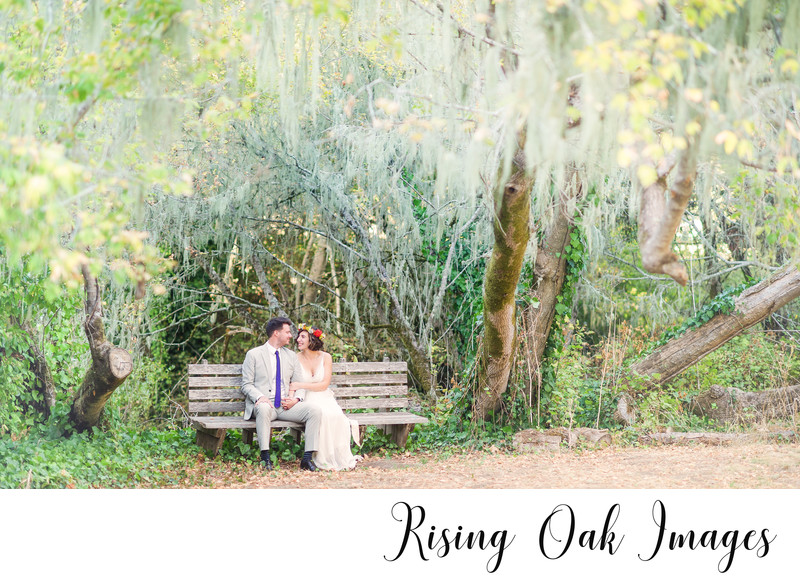 Couple sits under drooping trees in Texas hill country
