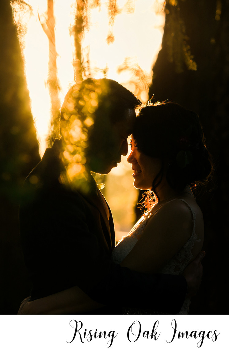 Artistic wedding photography in Austin