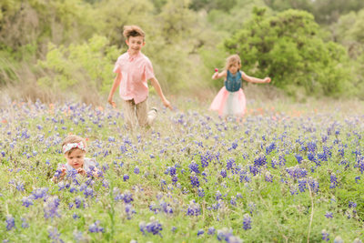 Austin bluebonnet family photography baby with siblings