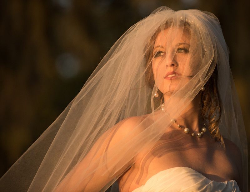 Fairhope Bride At Sunset