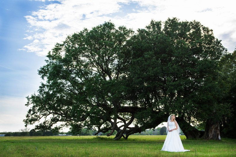 Fairhope AL Outdoor Wedding Photographer Candice Brown