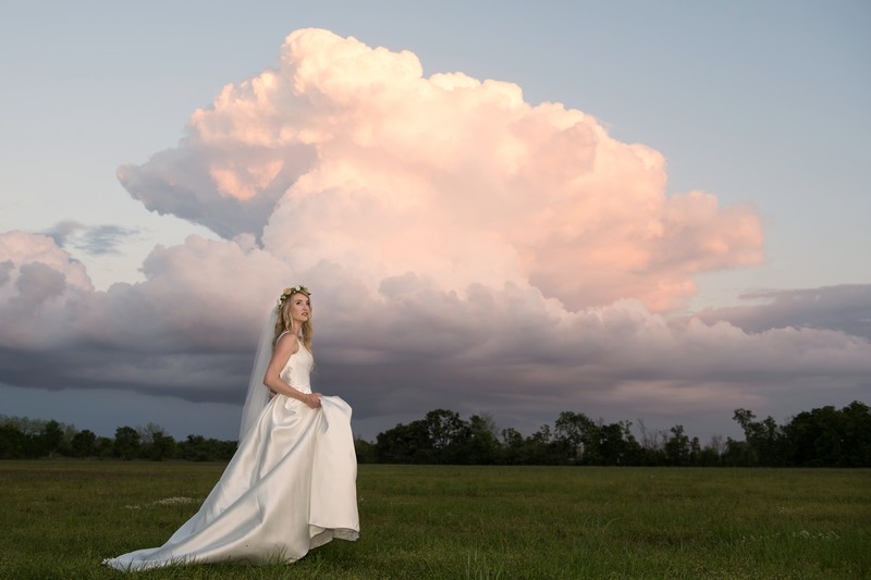 Oak Hollow Bride in Field