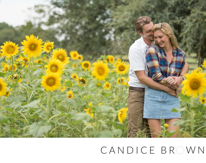 Sunflower Field Fairhope Alabama Wedding Photographer 1