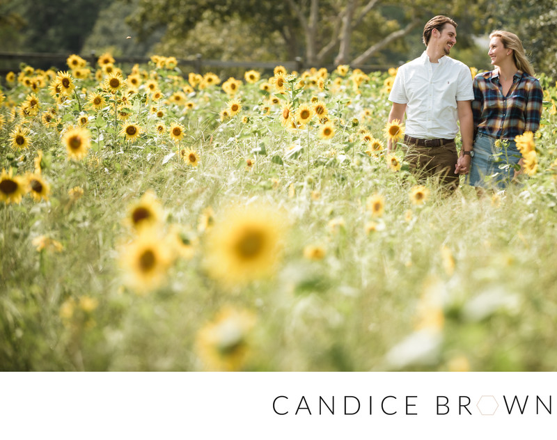 Sunflower Field Fairhope Wedding Photographer