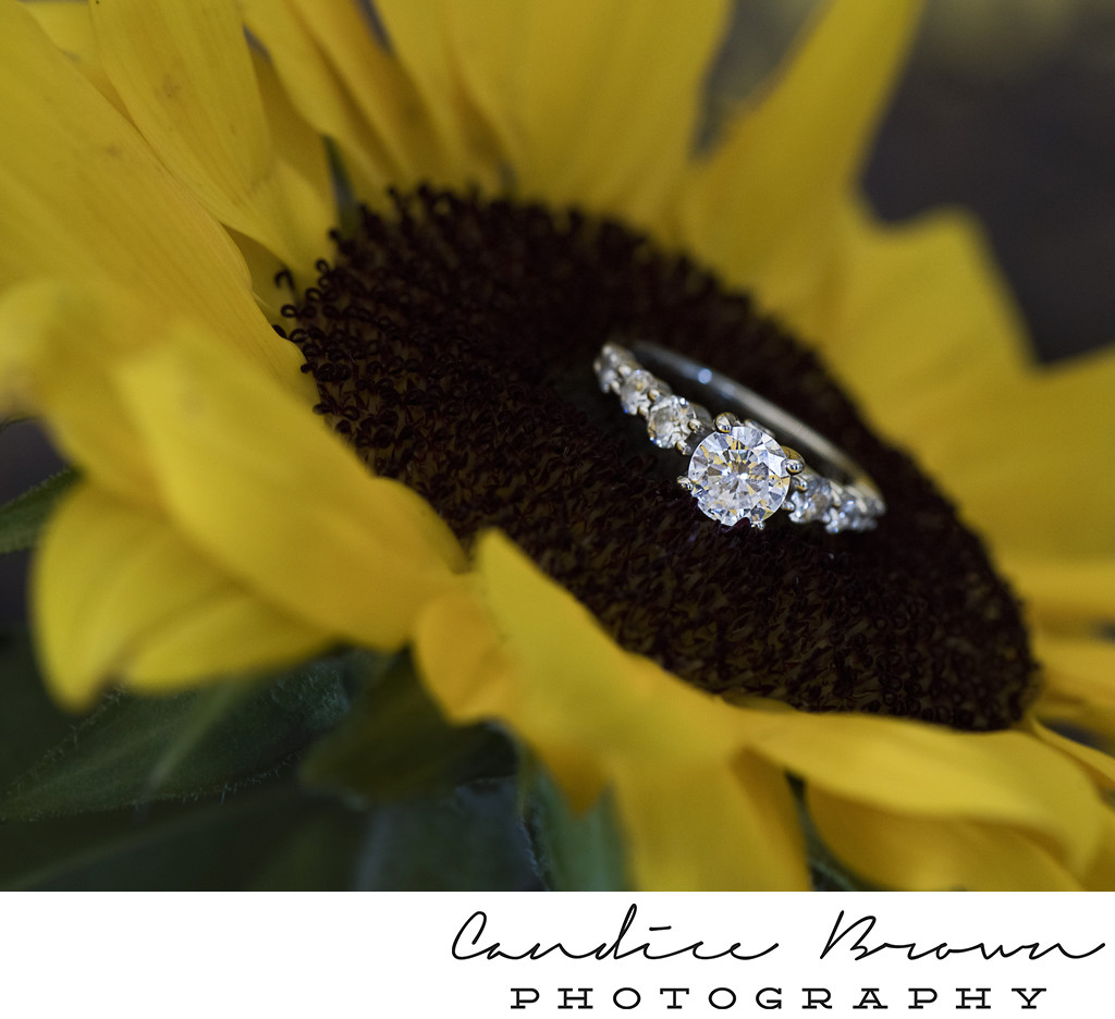 Citronelle Community Center Wedding Photographer