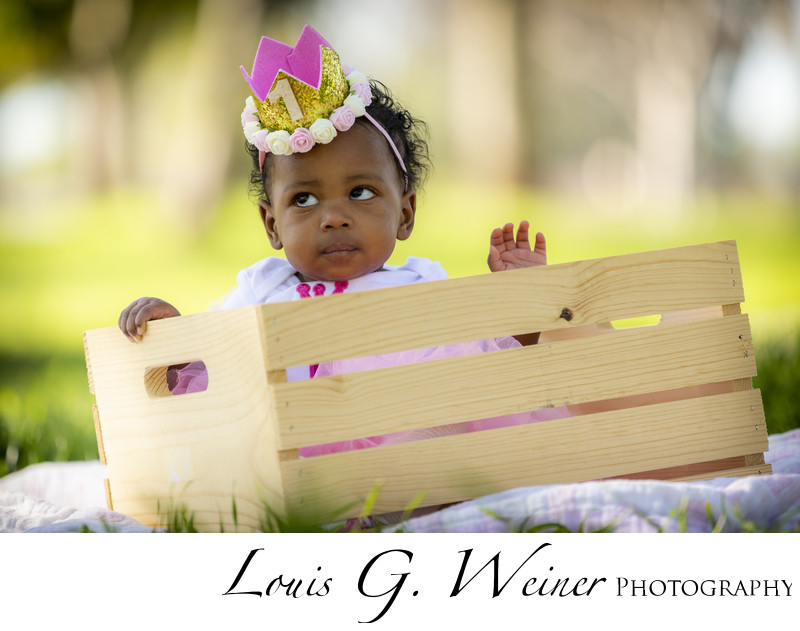 sweet little lady turns one. Family Portraits at the park