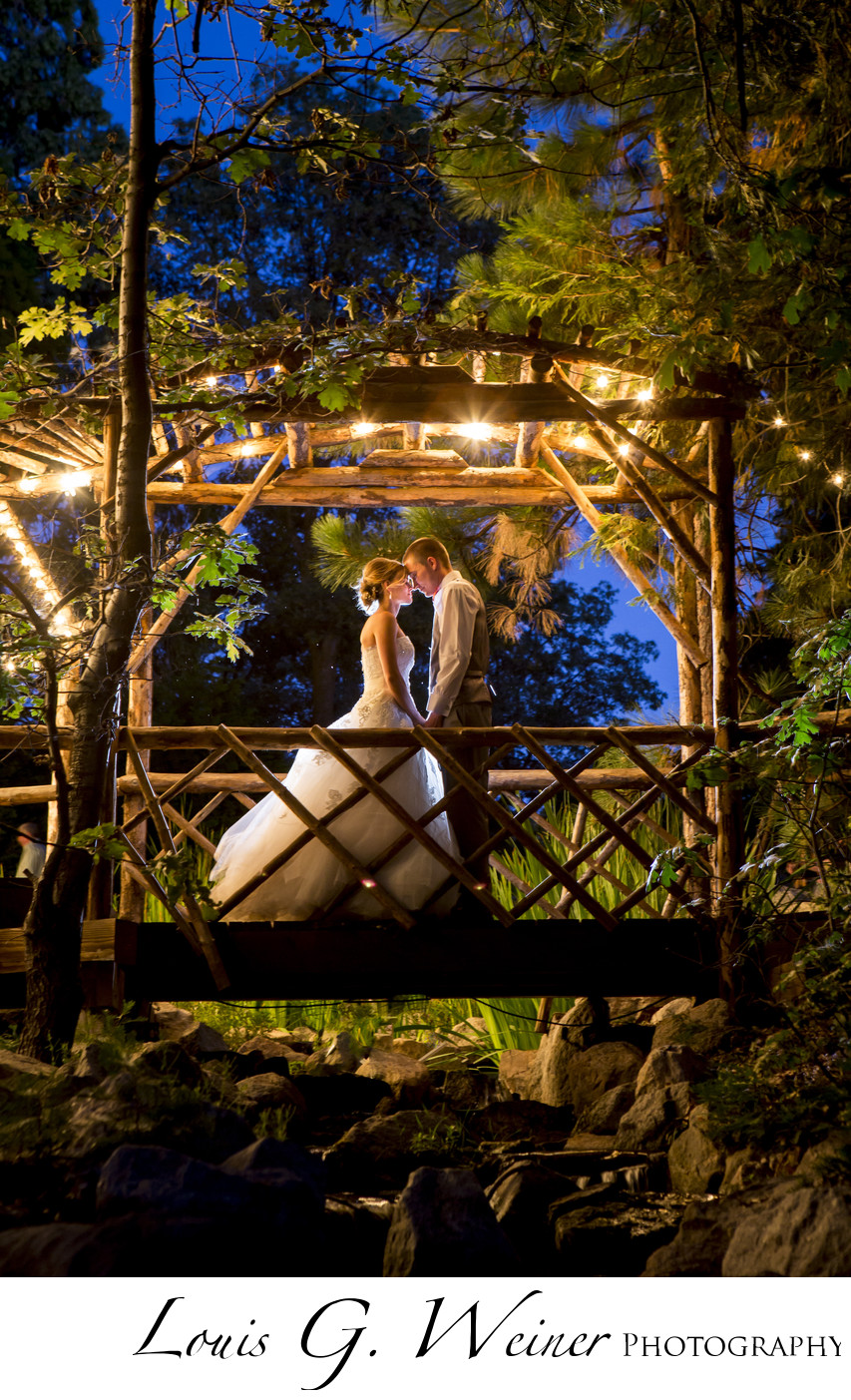 Mountain forest wedding night photography , Louis G Weiner