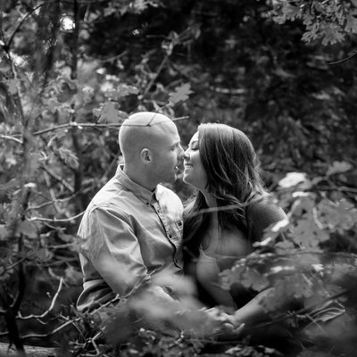 Pine Rose Fall Engagement session