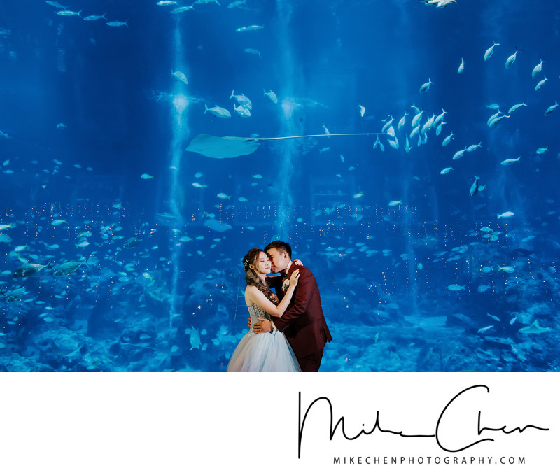 Sea Aquarium Wedding Photography