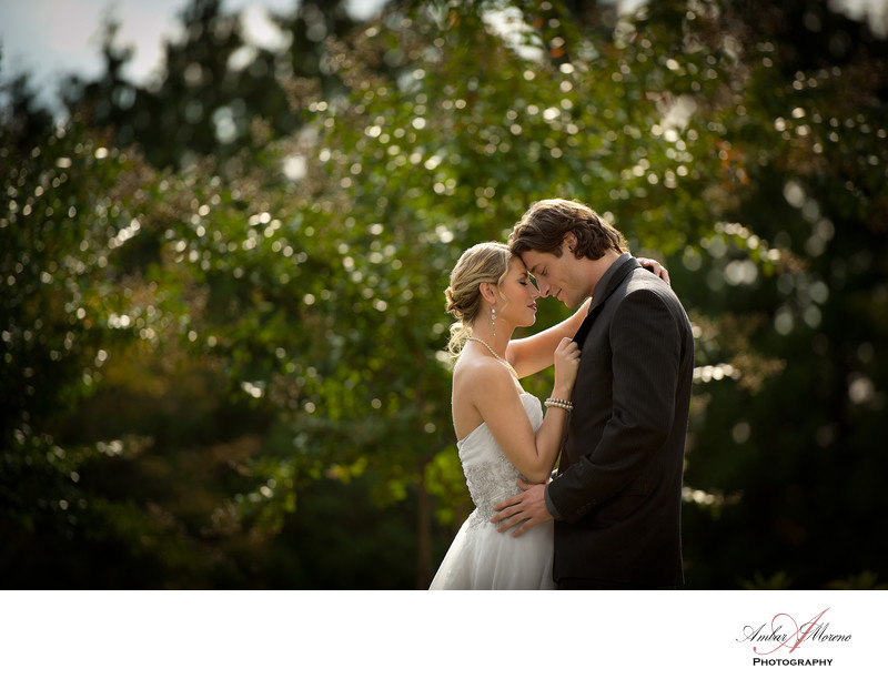 Ashford Estates - New Jersey Wedding-bride and groom