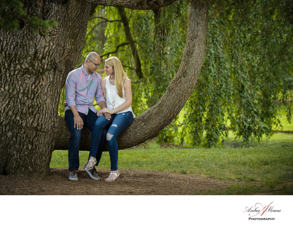 Longwood Gardens Engagement-Sitting on Tree