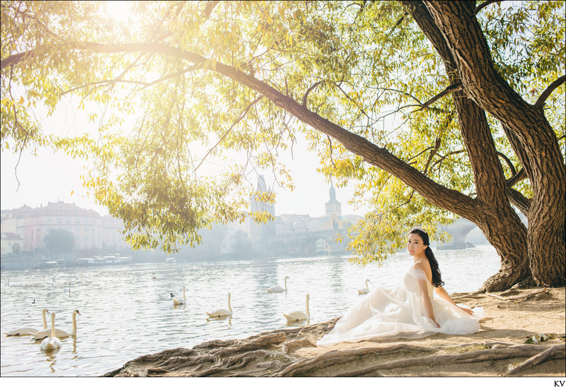 The swans and a princess - Prague pre-wedding portrait