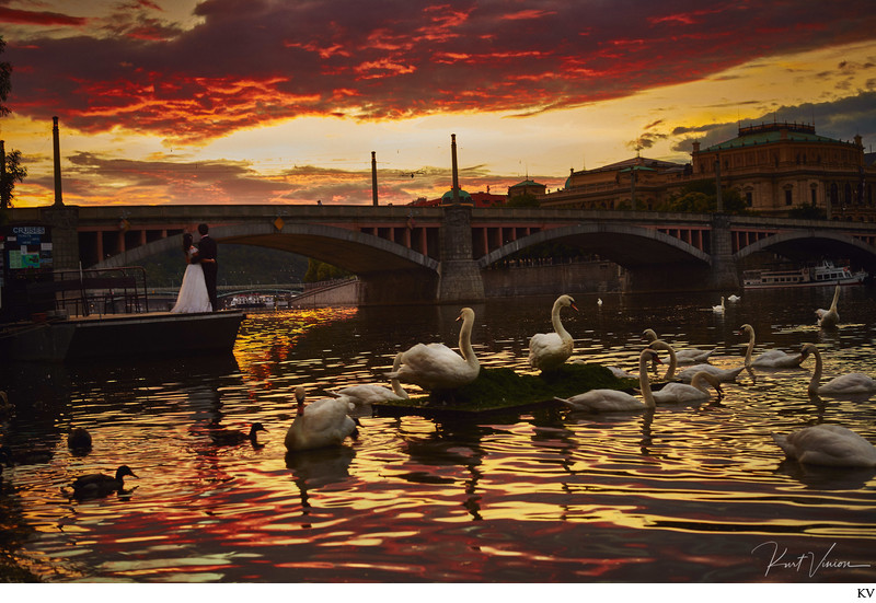 Prague beautiful sunrise + swans + pre wedding photo