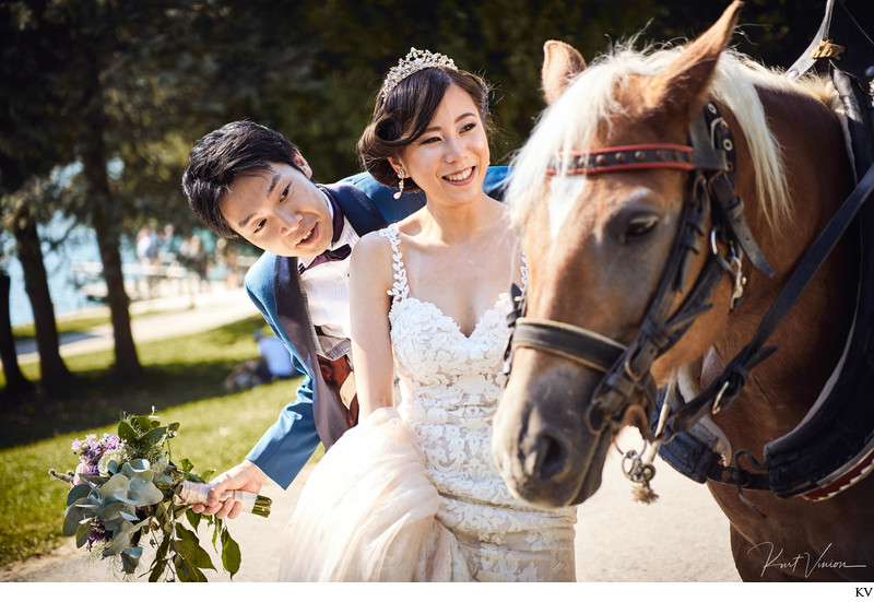 T+S pictured with their horse & carriage