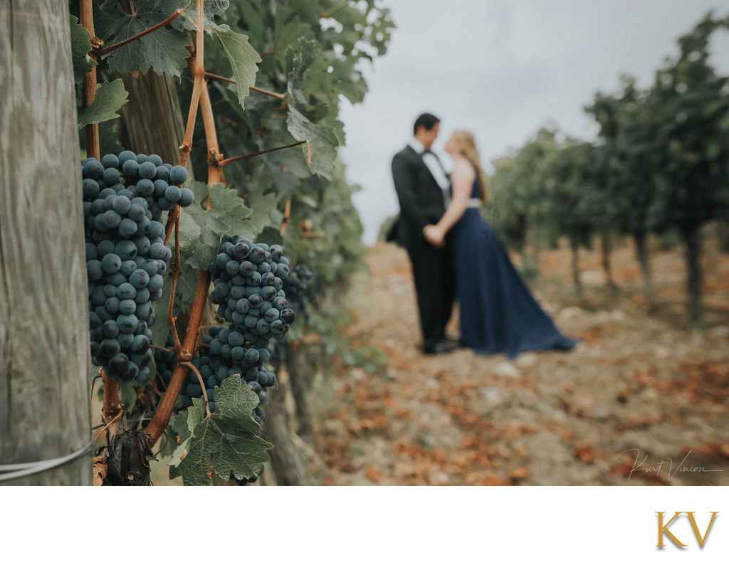 wedding couple in the vineyards Castello Vicchiomaggio