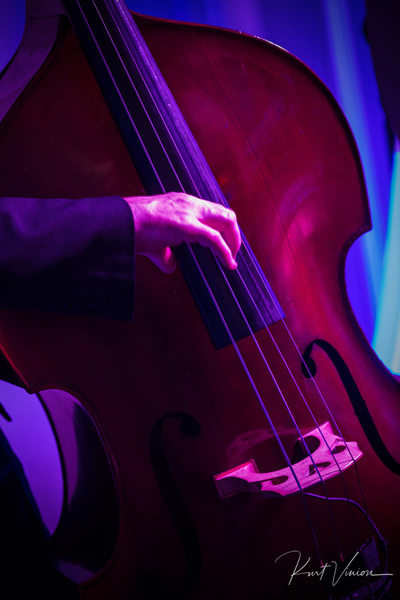 Bass player plays Four Seasons Hotel Prague weddings