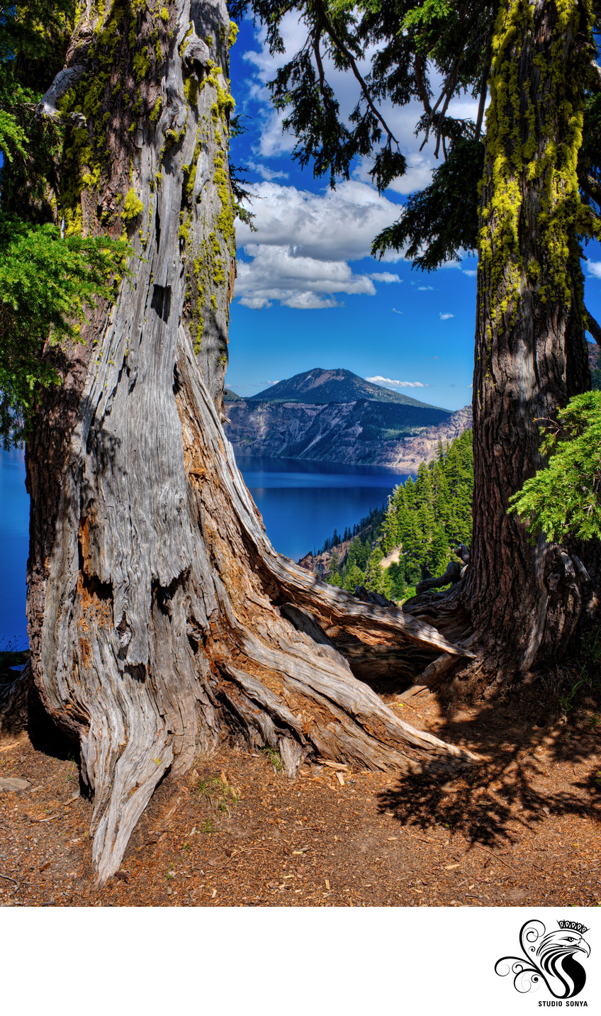 Peekaboo with Crater Lake