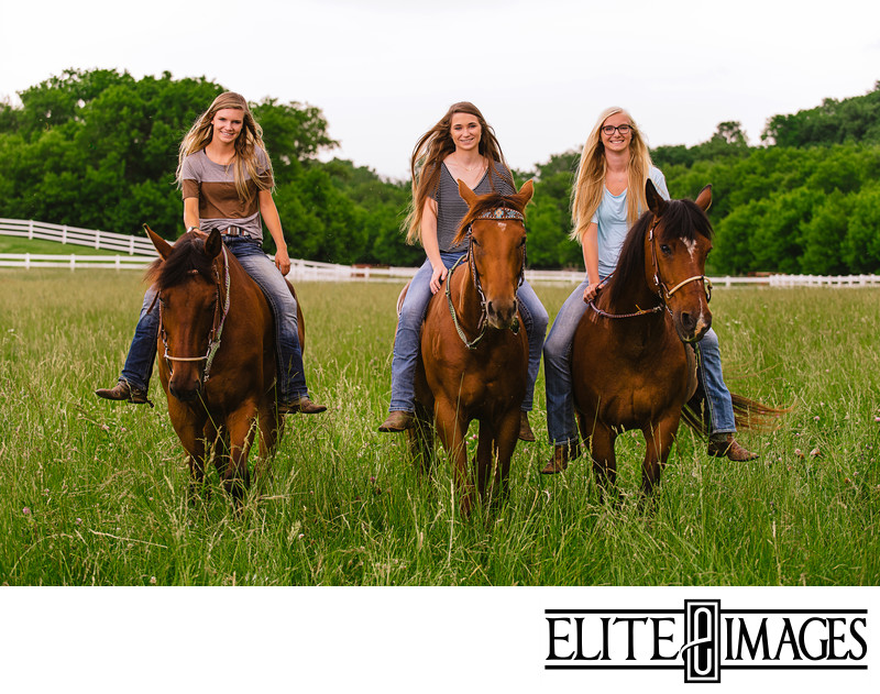 Professional Photography with Horses