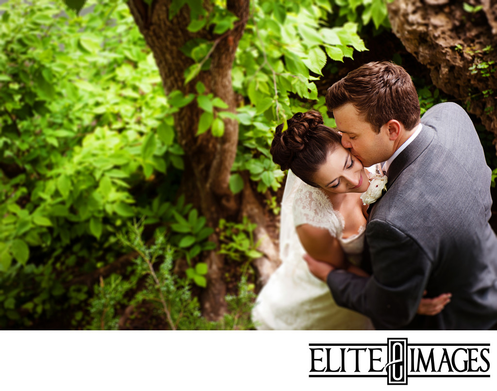 Professional Wedding Photographers around Dubuque