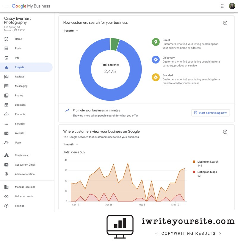 Google MyBusiness Insights Graphs