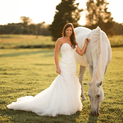 Rustic Bridal Portrait With White Horse