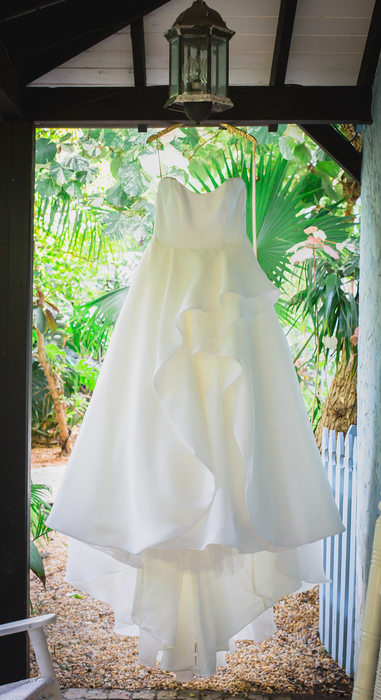 WEDDING DRESS PHOTOS BRIDES CANT DO WITHOUT