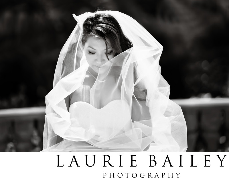 Los Angeles Wedding Bridal Portrait Veil