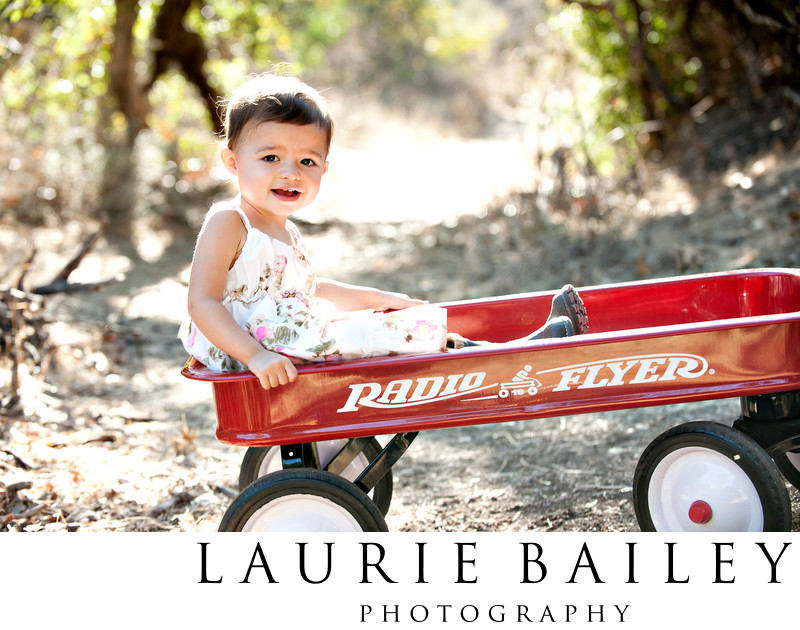 Copyright © 2012 Laurie Bailey Photography