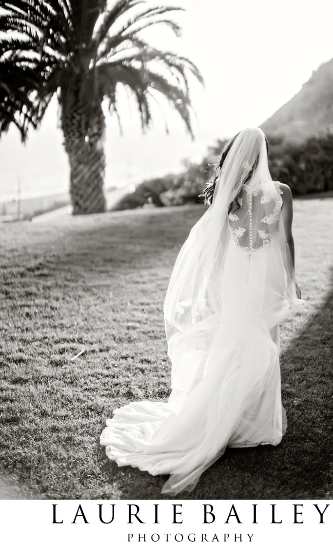 Anne Barge Bridal Portrait