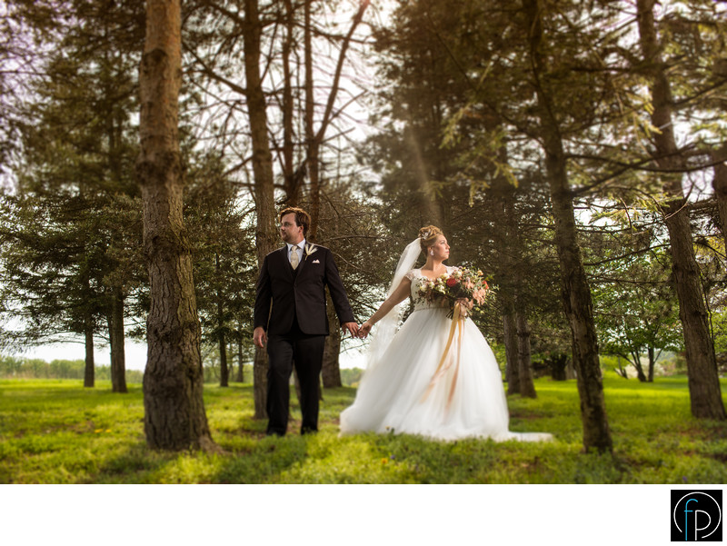 Fall Wedding Portrait At A Springton Manor Farm Wedding