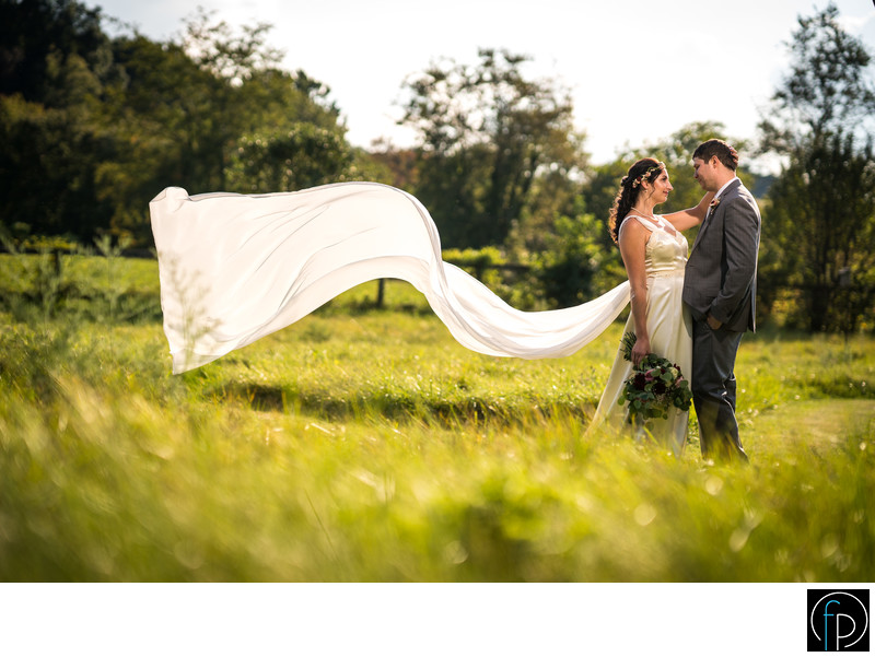 Dramatic Pennsylvania Back Yard Wedding Portrait