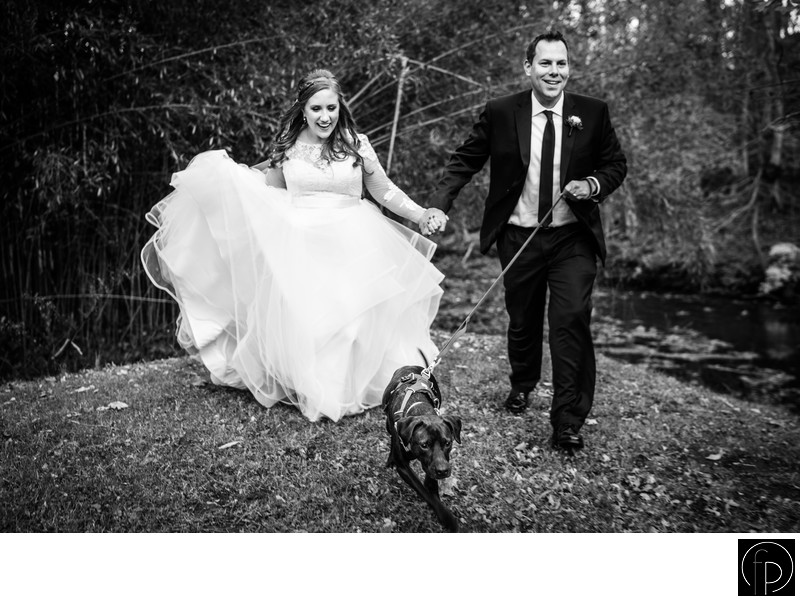 Bride and Groom With Their Dog at A Old Mill Wedding