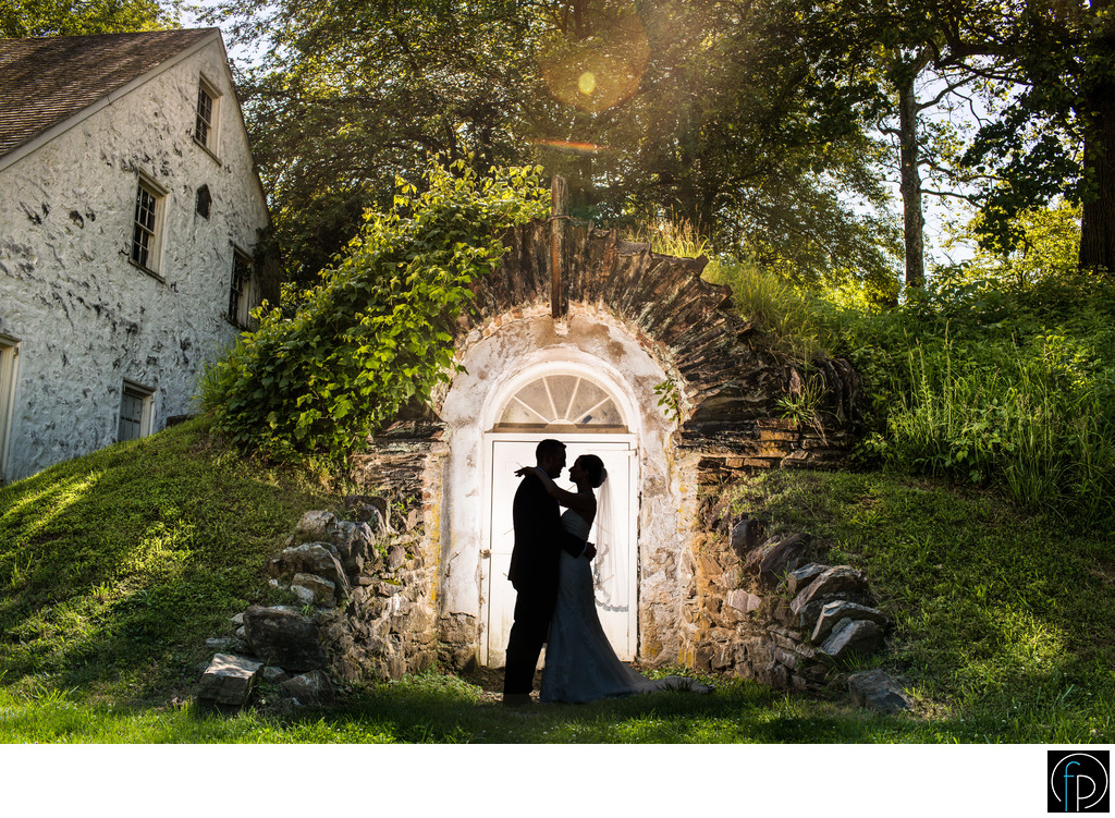 Knox Estate Wedding Portrait In Valley Forge PA