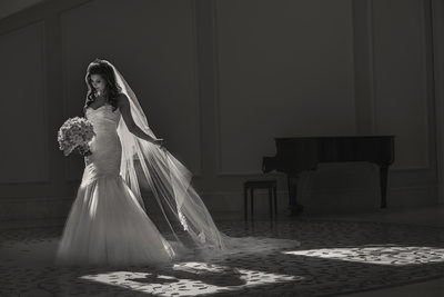 Persian Wedding Photo at the Ritz-Carlton Laguna Niguel