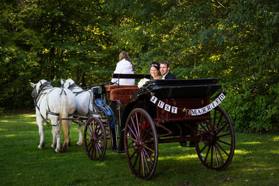 Tacoma Wedding Photographer Horse and Carriage Image