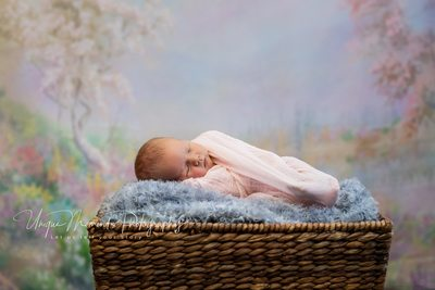 Infant newborn baby photographer Gig Harbor
