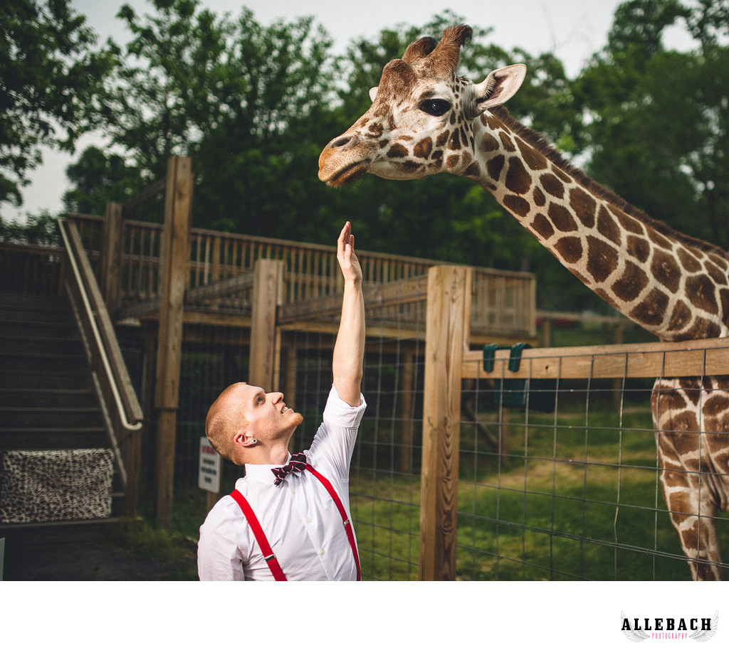 Giraffe and Groom Norristown Wedding