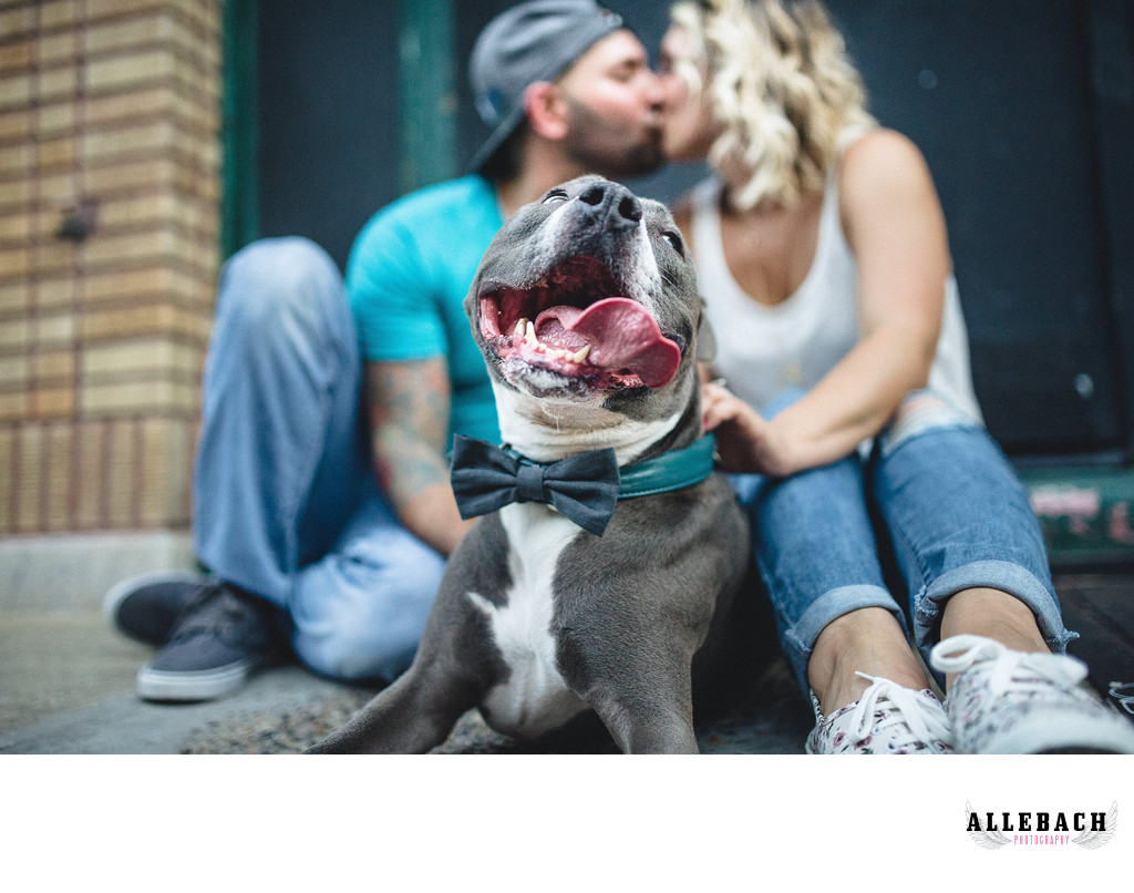 Creative South Philly Dog Engagement Photographers