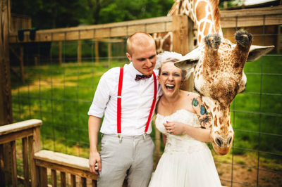 Giraffe Photo Bombs Wedding at Elmwood Park Zoo