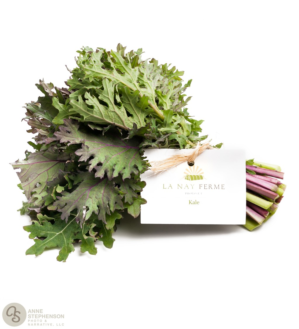 Purple kale bunch on white background