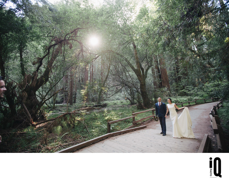 Bride and Groom at Muir Woods