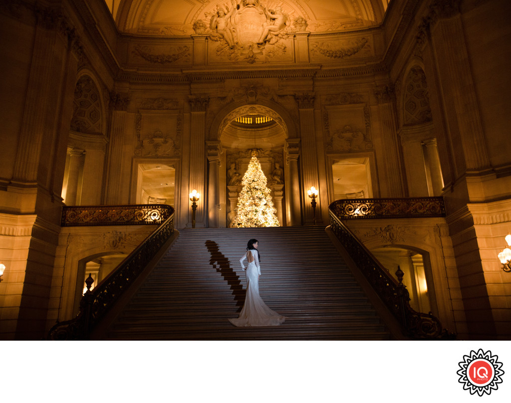 Bride and Christmas Tree at SF City hall
