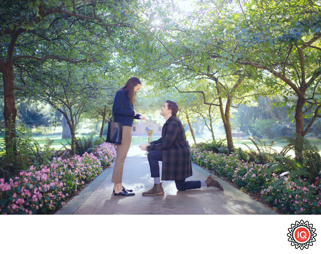 Real Shakespeare Garden Proposal
